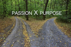 passion X purpose